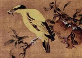 《榴枝黄鸟图》画法