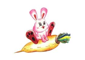 兔子色铅笔简笔画画法步骤(二)