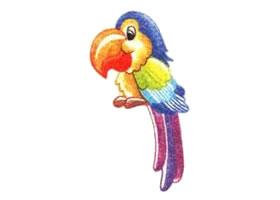 鹦鹉色铅笔简笔画画法步骤