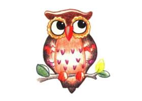 猫头鹰色铅笔简笔画画法步骤