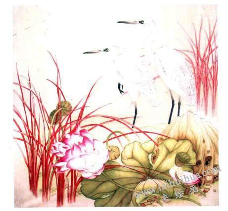 工笔花鸟画《远眺》的画法步骤04