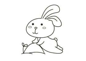 兔子简笔画作品(三)