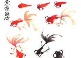 小金鱼的画法