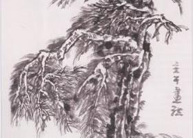 中国画松树主干的画法