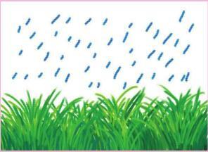 雨中的小草油棒画画法步骤03