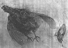 鸟的素描画法范例