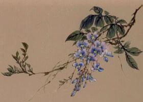 紫藤工笔画法步骤