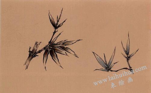 竹子工笔画法步骤02