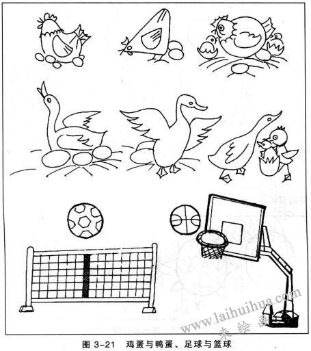 鸡蛋与鸭蛋、足球与篮球