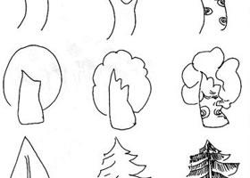 植物简笔画的画法