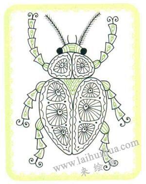 甲壳虫简笔画法步骤06