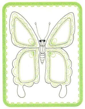 蝴蝶简笔画法步骤03