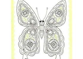 蝴蝶简笔画法步骤(四)