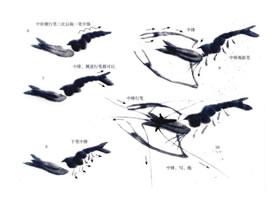 虾的写意画法(二)