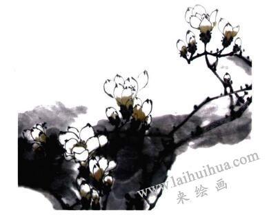 玉兰花的画法步骤04