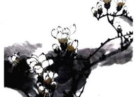 玉兰花的画法(二)