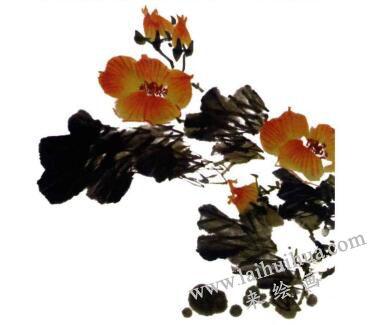 芙蓉花的画法步骤04