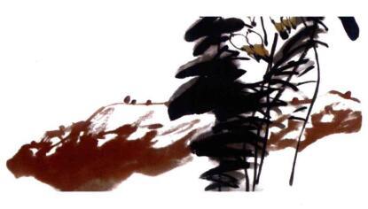 百合花的画法步骤04