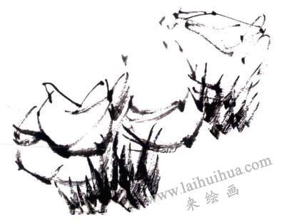 水仙花的画法步骤01