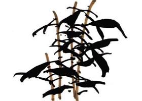 山丹丹花的画法步骤解析
