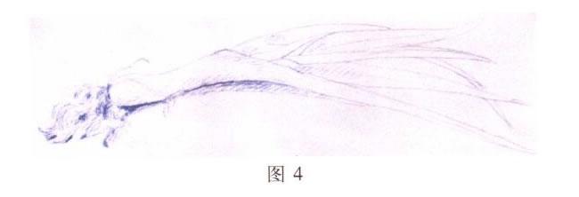 大蒜水粉画写生步骤01