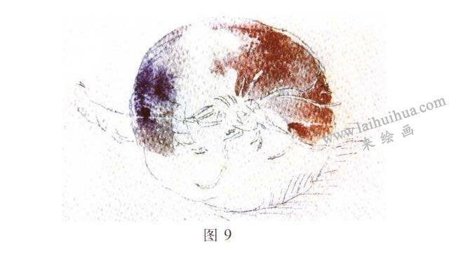 洋葱水彩画写生步骤02