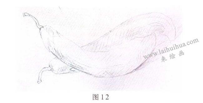 茄子水彩画写生步骤01