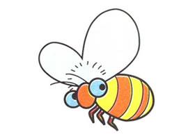 蜜蜂儿童卡通画法步骤