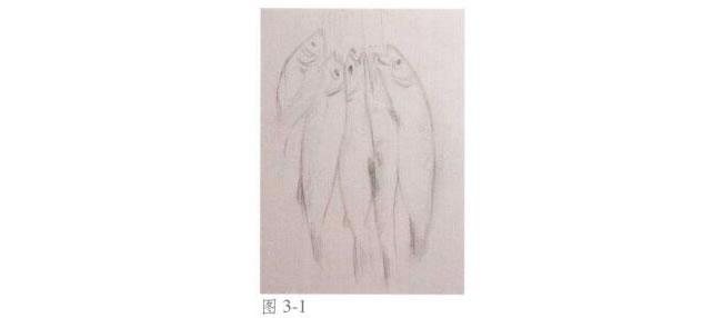 静物《鱼》水彩画法步骤01