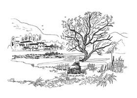 树干和树叶速写画法浅析