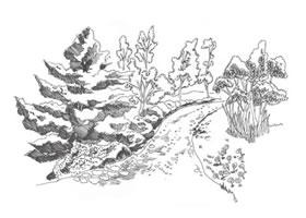 泥土路和木板路速写画法