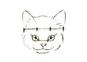 水墨画猫头部画法过程之一