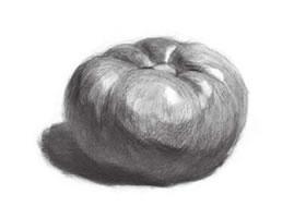 西红柿素描画法(二)