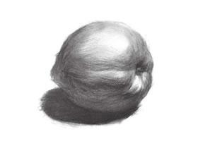 油桃的素描画法