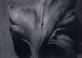《石膏浮雕》静物素描作品