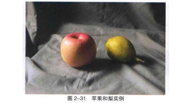 苹果和梨组合素描画法