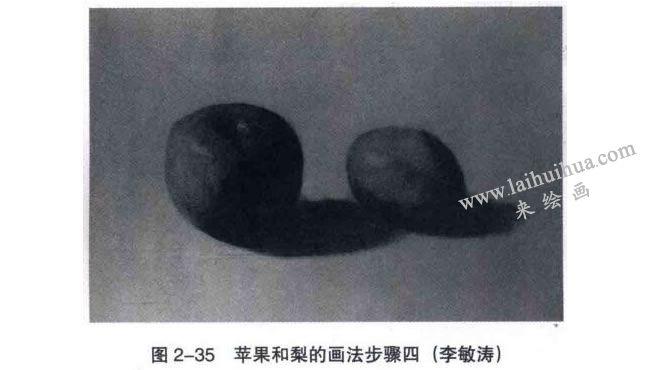 苹果和梨组合素描画法步骤04