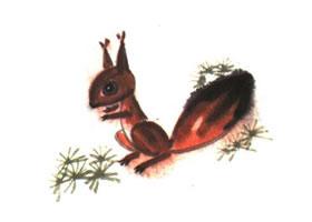 松鼠儿童水墨画法