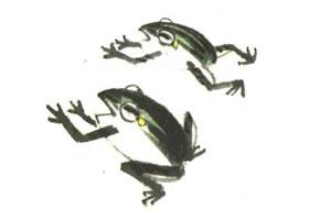 青蛙儿童水墨画法