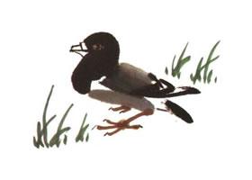 鸽子儿童水墨画法