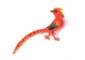 锦鸡儿童水墨画法