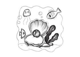 珍珠贝创意素描画法