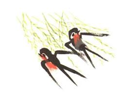 燕子儿童水墨画法