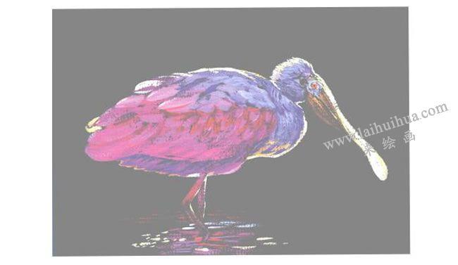 粉色的篦鹭水粉画法步骤03