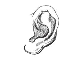 人物速写耳朵的表现方法