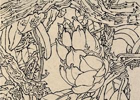 王瑛《马缨杜鹃》白描花卉写生作品