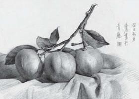 橘子素描画法(一)