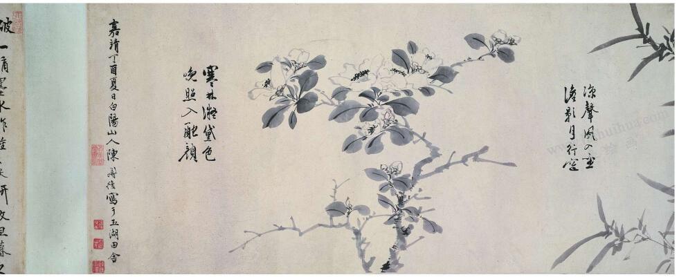 陈淳《花卉图》卷古画高清大图(三)