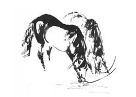 速写马的一般方法
