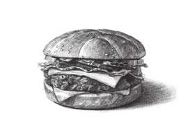 汉堡素描画法